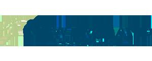 logo-new-ireland-base